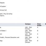 First semester grades